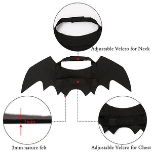 Cat Bat Wings Costume