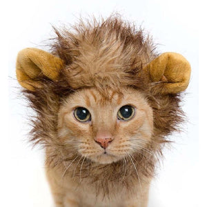 Lion Mane Hat Cat Costume