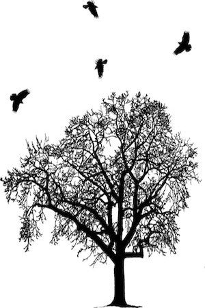 Seasons K Designs Salty Raven Crow Swarm Graphic