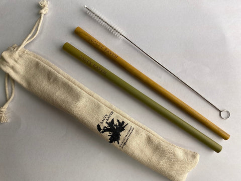 Biodegradable Reusable Bamboo Straw Set, Cleaner & Bag