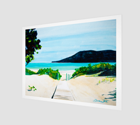 A watercolor painting of Flamenco Beach, Puerto Rico, by Artist Dave White.