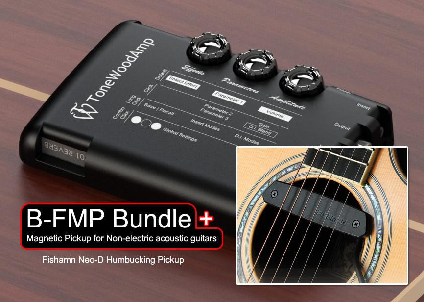 Double Bundle: ToneWoodAmp With B-FMP, B-KNG pickups + Extra X-Brace