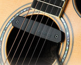 Fishman Neo-D for Steel Strings Guitars