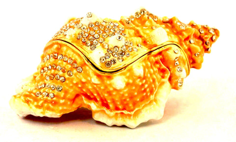 Conch Shell Trinket Box