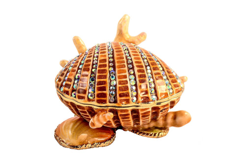 Shell on Coral Stand Trinket Box