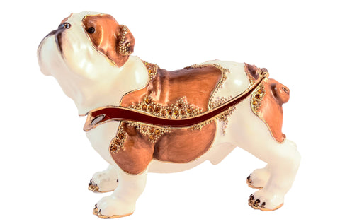 Bull Dog Trinket Box