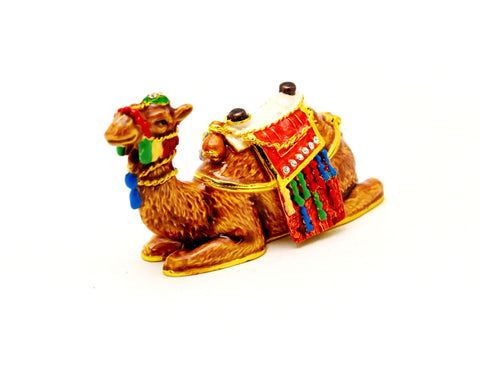 Dressed Sitting Camel