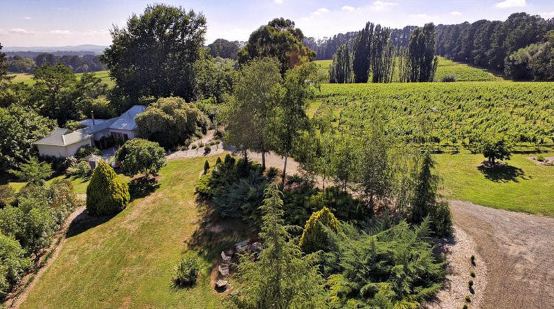 Enjoy a garden ramble at Word of Mouth Wines - Orange NSW