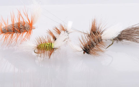 Few flies that have produced salmon.