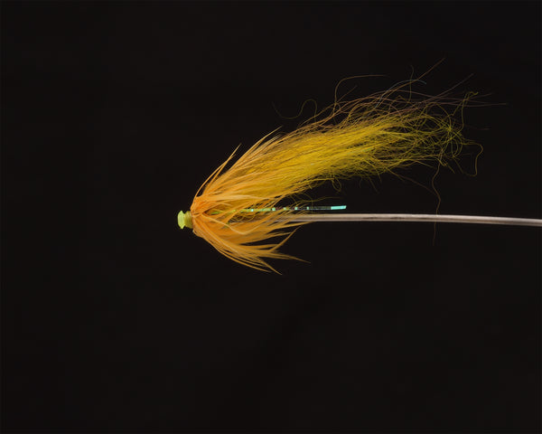 banana fly for salmon