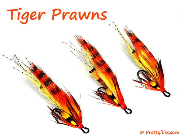tiger prawns best salmon flies