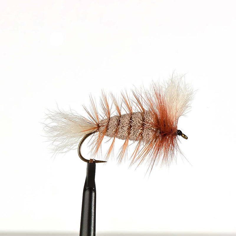 Gray-White Tail-Orange Hackle Bomber