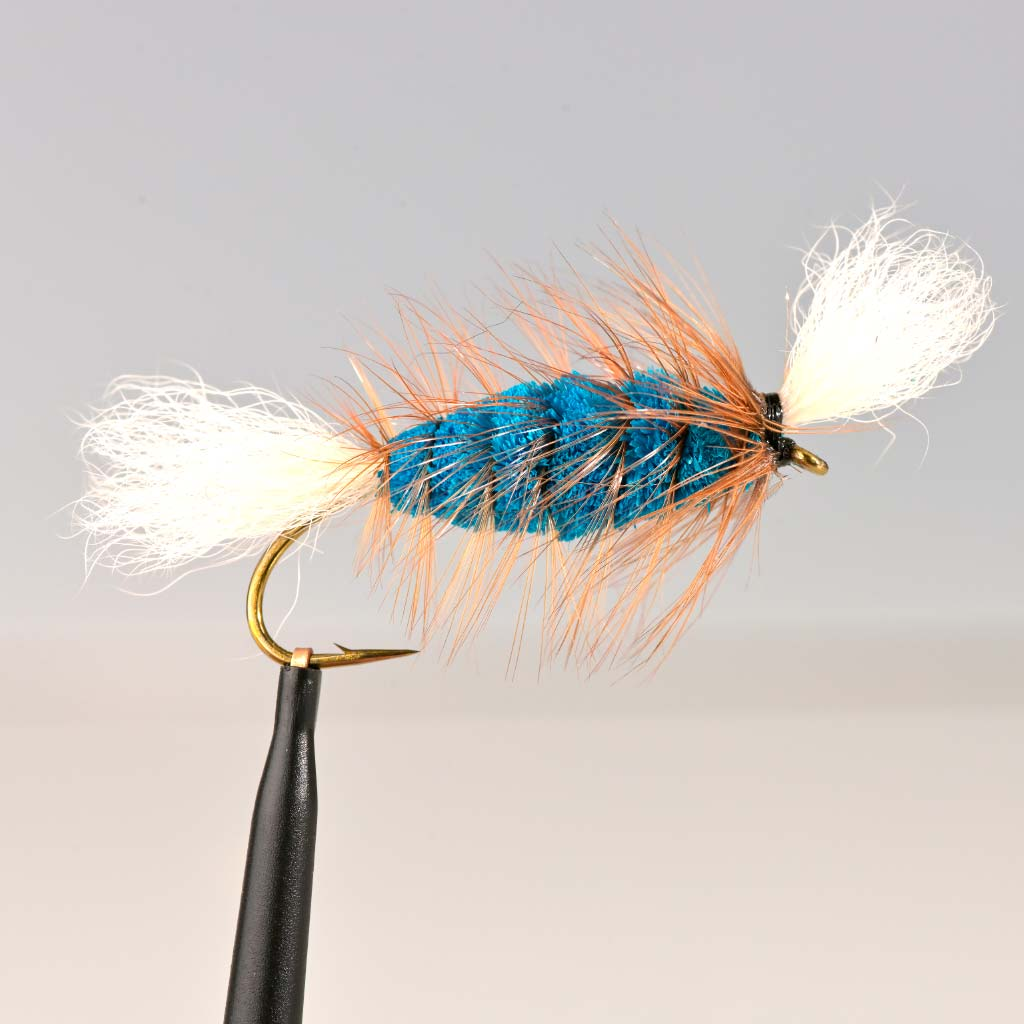 BLUE-White Tail-Brown Hackle (Cigar Bomber)