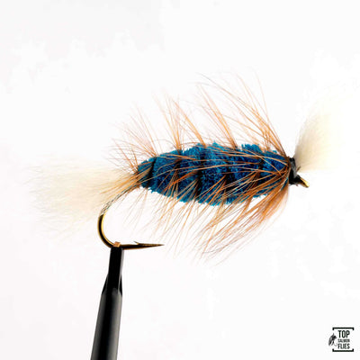 August Fly Selection I
