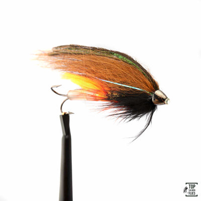Phatagorva Temple Dog Tube Tungsten Conehead