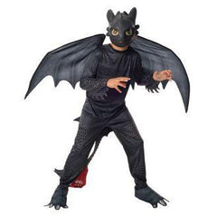 Toothless Boys Costume