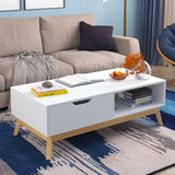 Simple Modern Coffee Table