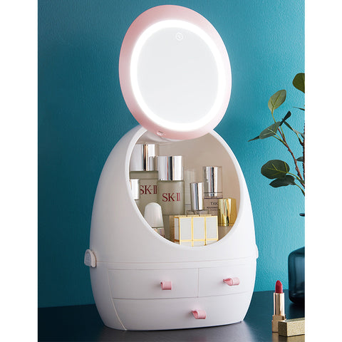 Luxe Cosmetic Organizer With LED Mirror