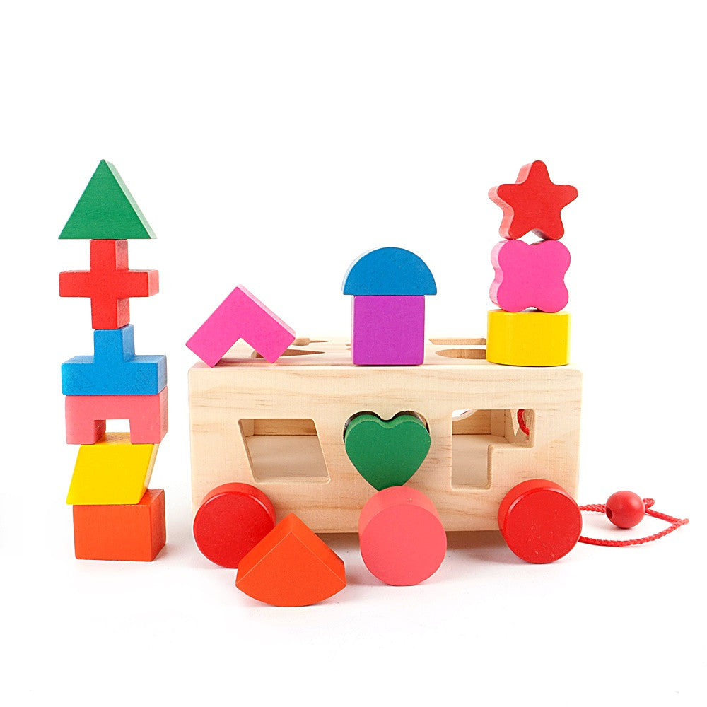15 Hole Intelligence Box Shape Matching Blocks