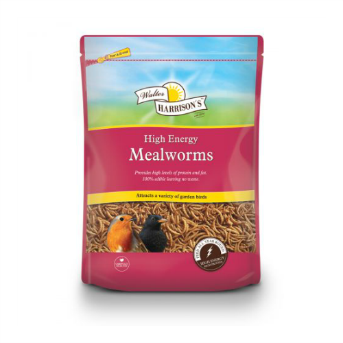 Mealworms (100g/500g/1kg)