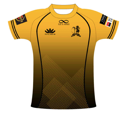SCC Rugby Section Training T (GOLD)
