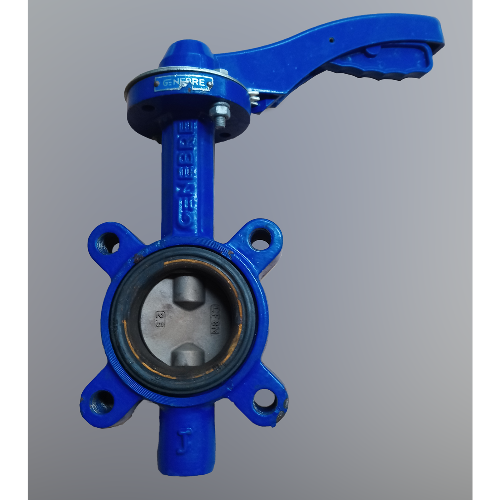 [USED] Butterfly valve. DN65 PN10-16