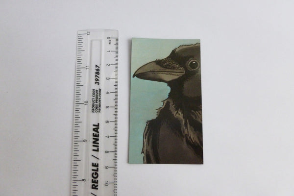 Crow Magnet