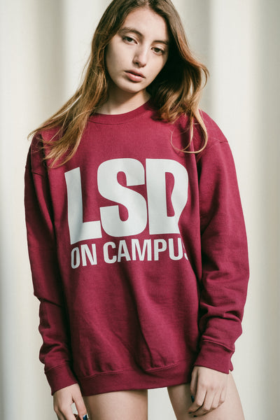 LSD On Campus Sweater