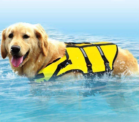 Image of Dog Oxford Breathable Mesh Life Jacket - trendyholo.com