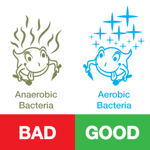 Two kinds of bacteria, Aerobic and anaerobic. Which kind is best for your holding tanks?