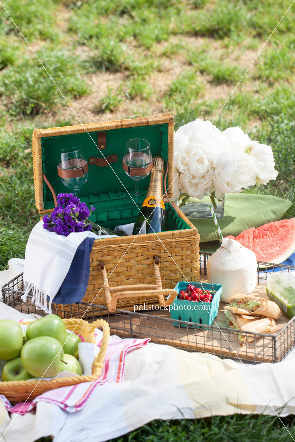 Summer Picnic in Central Park