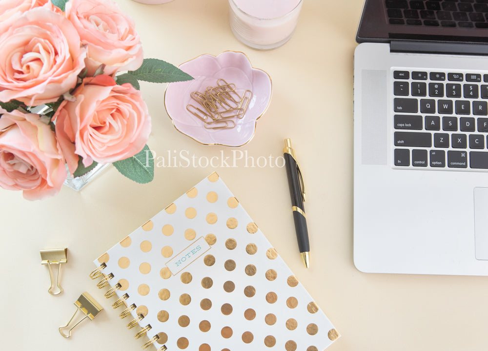 Blush & Gold Desk Collection - 08