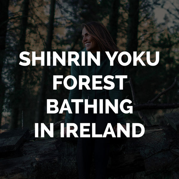 Shinrin Yoku Forest Bathing Spots in Ireland