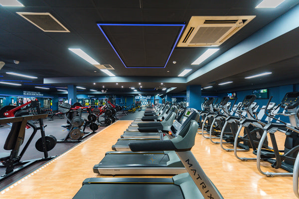 A view Bodyscape's fully functioning gym in Belfast.