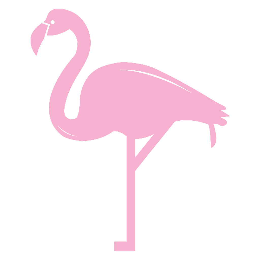 Natalie Conway Spirit Animal Flamingo