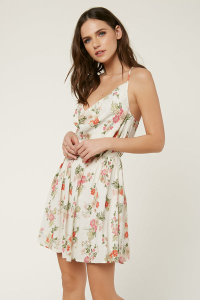 ASHBY DRESS
