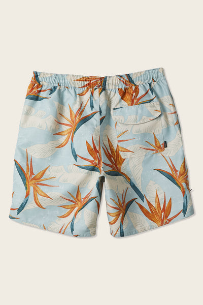 Bright Birds Volley Boardshorts | O'Neill Clothing USA