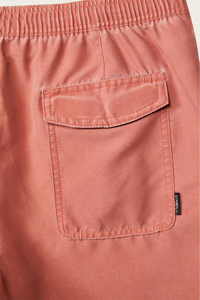 CLASSIC VOLLEY CRUZER BOARDSHORTS