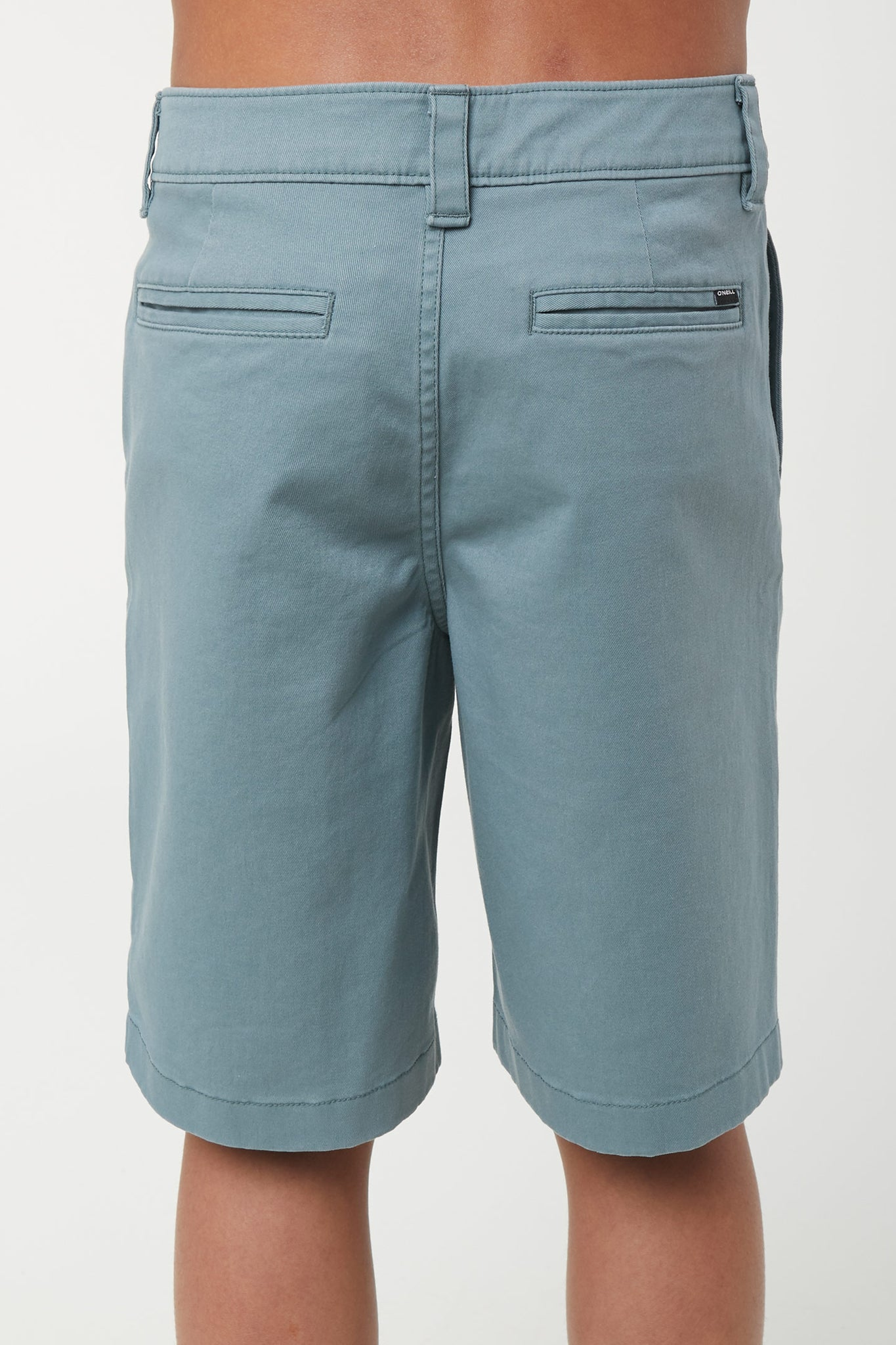 Boys Redwood Stretch Shorts - Blue Lagoon | O'Neill