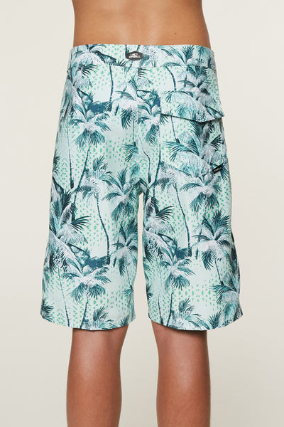 BOYS DARN OLD PALMER BOARDSHORTS