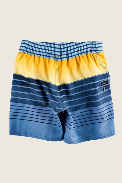 LITTLE BOYS HYPERFREAK HEIST BOARDSHORTS