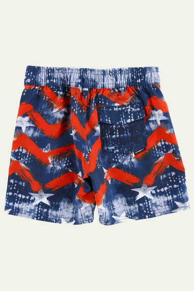 LITTLE BOYS HYPERFREAK INDEPENDENCE BOARDSHORTS