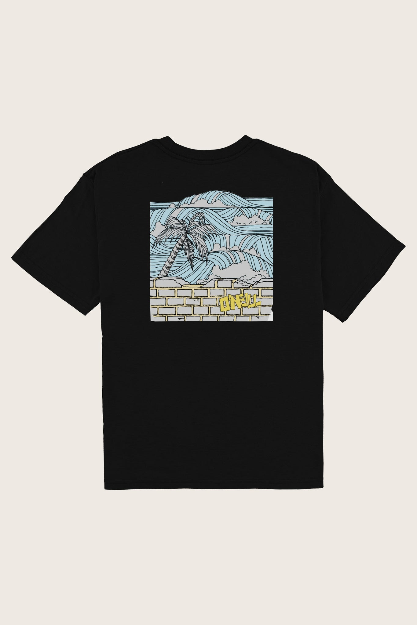 Boys Secret Spot Tee - Black | O'Neill