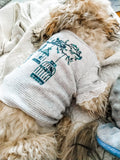 Grey Stripes & Teal Birdcage Stripe Eco Pretty Reimagined Pet Shirt