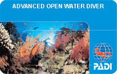 Advanced Open Water Diver Gift Certificate