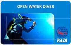 Open Water Diver Part 1 Gift Certificate