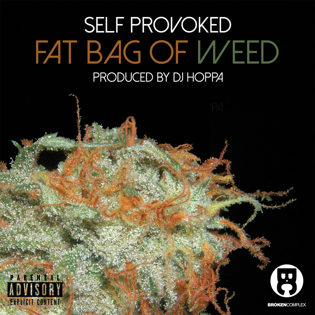 FAT BAG OF WEED [F.B.O.W.] (SINGLE)