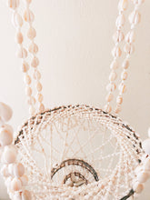 Seashell Chandelier or Plant Hanger