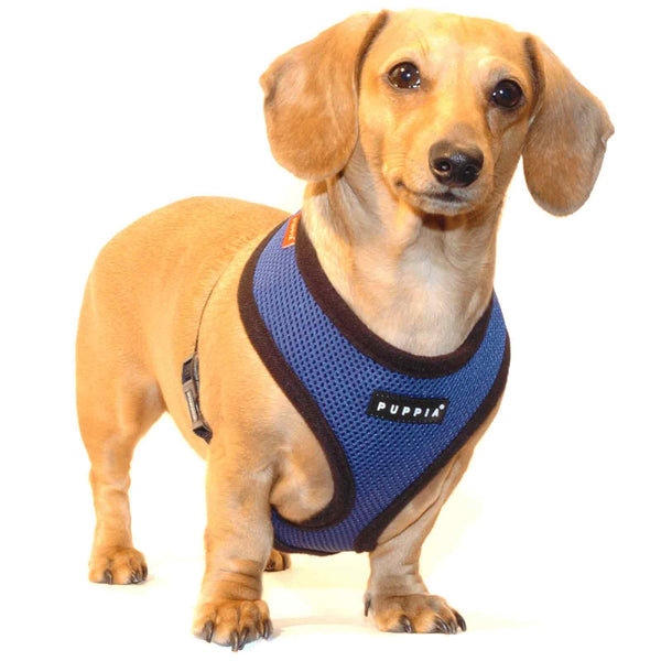 Puppia Soft Mesh Dog Harness - Royal Blue - Paw Prints & Curly Tails