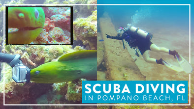 SCUBA DIVING IN POMPANO BEACH, FL
